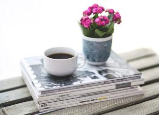 Kalanchoe - czym jest i jak uprawiać w mieszkaniu?