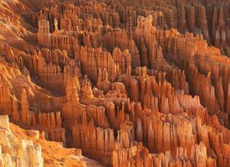 Jak odróżnić piaskowiec od wapienia?